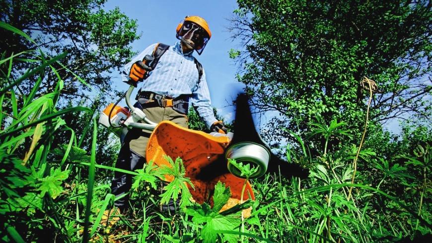 Gartenarbeiter/-innen gesucht
