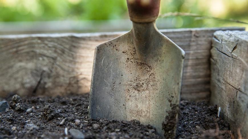 Terra Preta: Schwarzerde aus Holzkohle gewonnen
