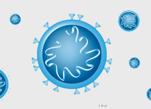 Coronavirus 2019-nCoV