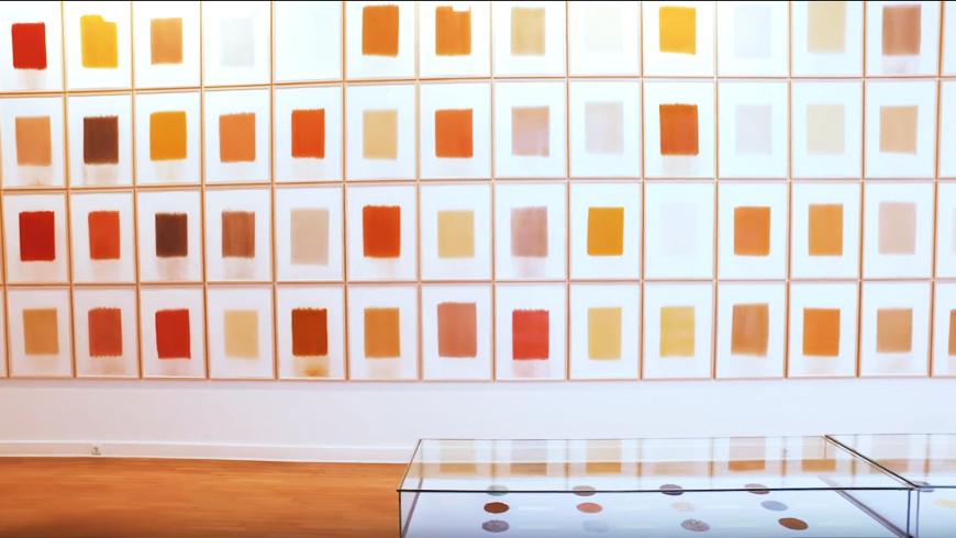 Herman de Vries: Ausstellung im Georg Kolbe Museum